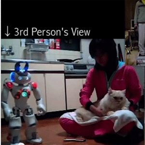 kinect-cat-brush-nao-robot