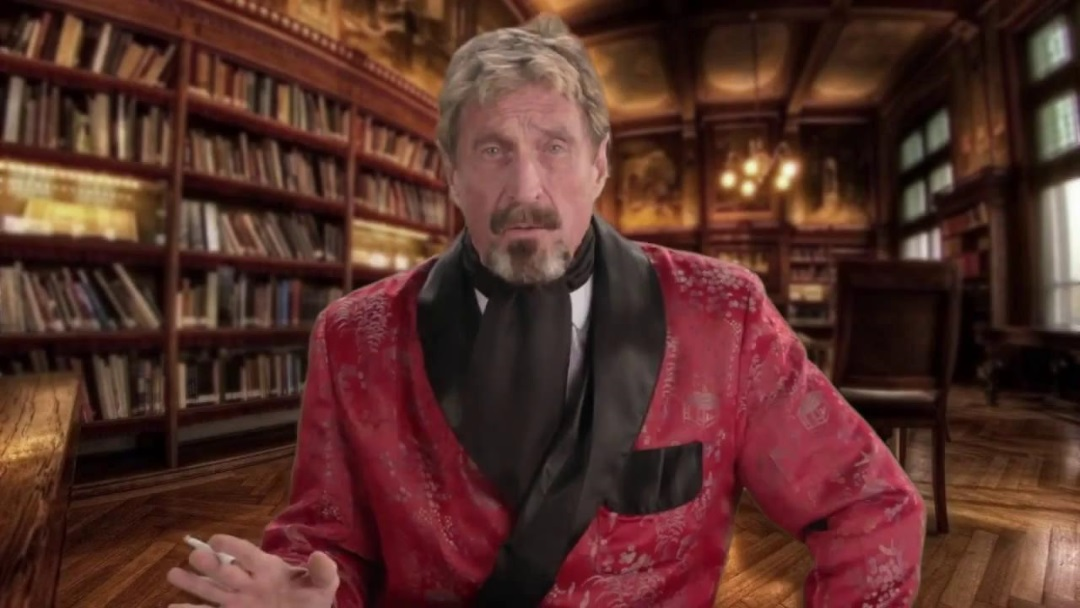 John McAfee's just too mental for Intel