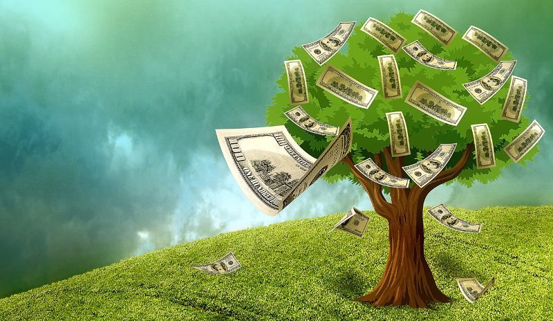 funding money tree