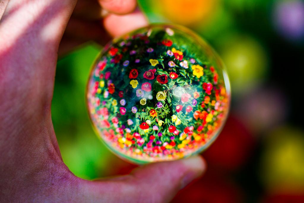 crystal ball sphere big data predict future flowers globe vision see
