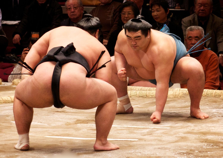Afbeeldingsresultaat voor sumo