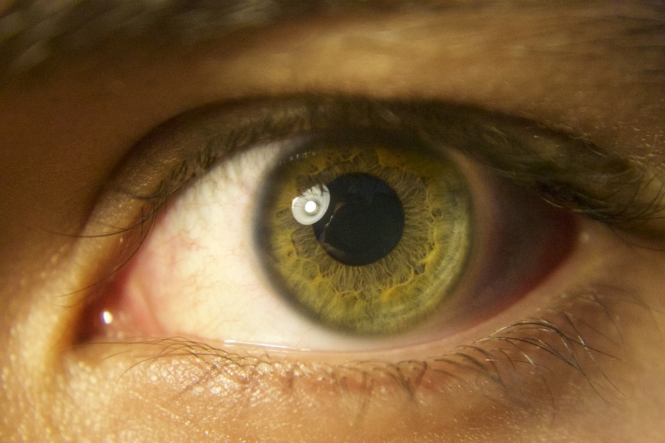 Google researchers use Eye scan to detect heart risk