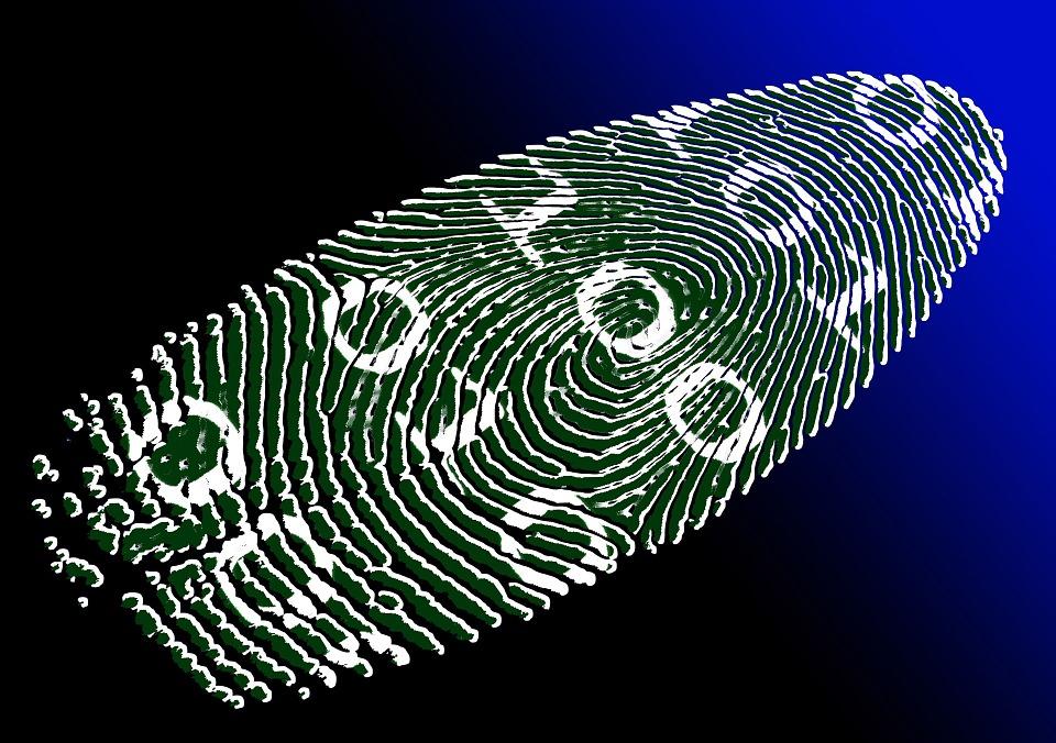 Digital identity sales on the rise through newly popular dark web site