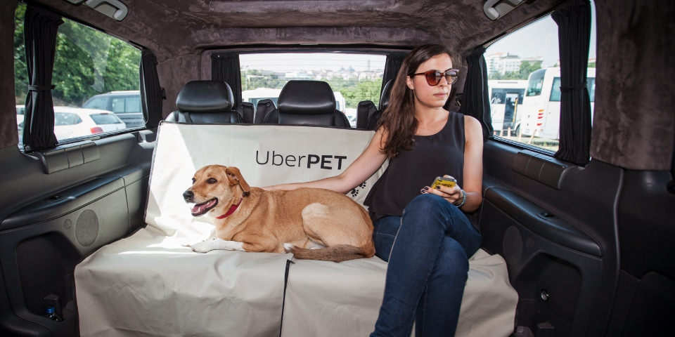 Uber to offer animal transport with new Uber Pet service
